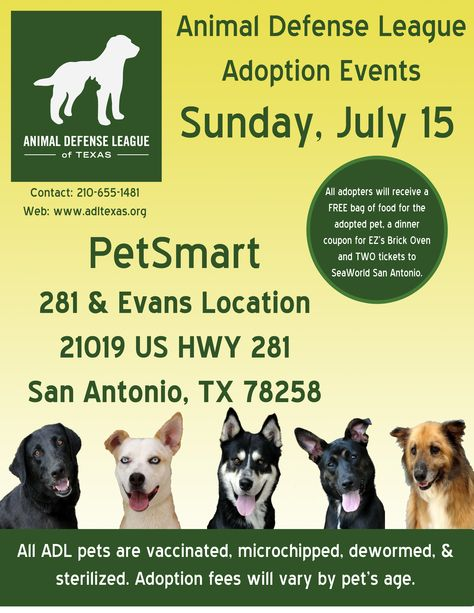 Sunday July 15 In Addition To Yappy Hour There Will Be A Pet Adoption Event At The Petsmart Location On 281 And Evans Pet Adoption Event Pet Adoption Animals