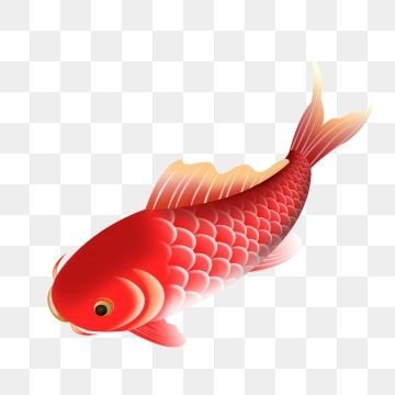 Jumping Fish Fish Clipart Free Jump Png Transparent Clipart Image And Psd File For Free Download Risunki Ryba Raboty
