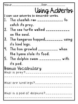 Verbs And Adverbs Differentiated Worksheets Activity More