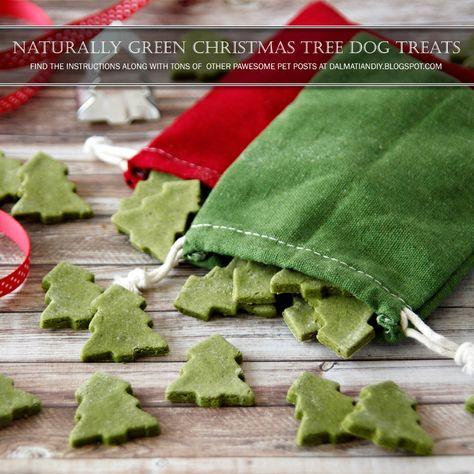 DIY Christmas Dog Treat Recipes | {RECIPE} Naturally Green Christmas Tree Dog Treats