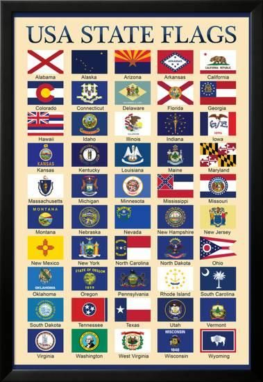 USA 50 State Flags Chart | Frazier | Poster prints, Dinosaur posters  States Flags Pictures on all 50 flags, gallery of sovereign-state flags, midwest state flags, world map with flags, all us flags, official state flags, south west region state flags, all state flags, violent lips flags, american state flags, german state flags, southern state flags, australian state flags, country flags, caribbean flags, us state flags, individual state flags, france state flags, color of state flags,