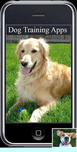 1 Dog Behavior Pdf And Off Leash Dog Training Jacksonville Nc