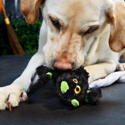 Bark Spider Dog Toy Harriet The Spider Black Spider Dog Best