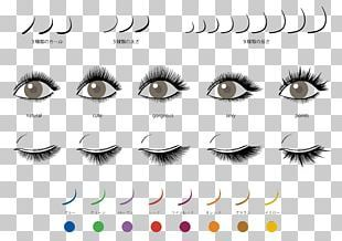 Beauty Parlour Artificial Hair Integrations Cosmetologist Hairstyle Png Clipart Artificial Hair Integra Beauty Salon Posters Beauty Parlor Eyelash Extensions