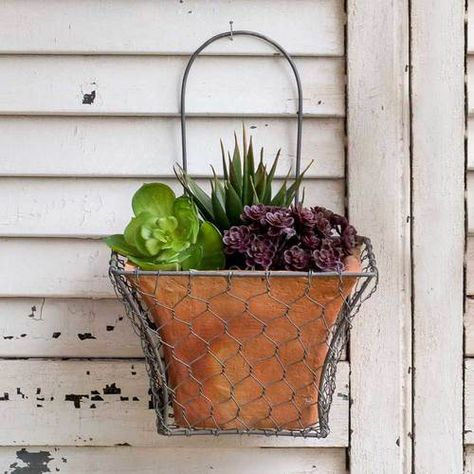 Set Of Two Wire Back Wall Planters With Images Wall Planter