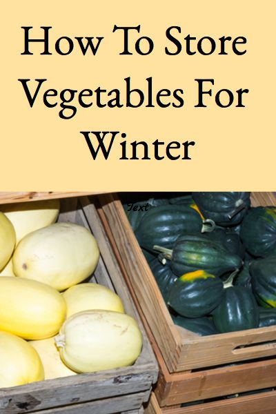 This post describes how to store vegetables for winter successfully and provides a handy chart describing the proper storage conditions for each vegetable. Store Vegetables, Growing Vegetables, Fruits And Vegetables, Conservation, Fruit And Vegetable Storage, Canned Food Storage, Root Cellar, Survival Food, Emergency Preparedness