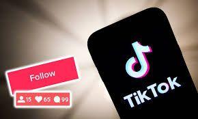 Cheap Tiktok Followers How To Get Followers Increase Followers Social Media Marketing Services