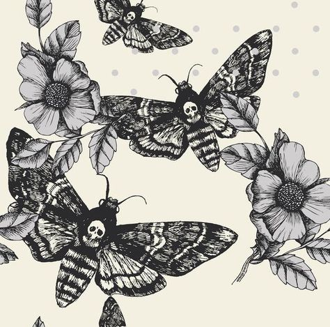 Butterflies, Dragonfly, Death Moth & Entomology