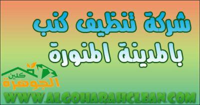 شركة تنظيف كنب بالمدينة المنورة Arabic Calligraphy Calligraphy