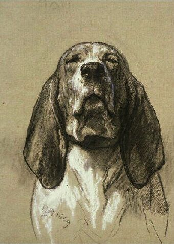 Rosa Bonheur....I Love this!!! I so wish I could draw like this!