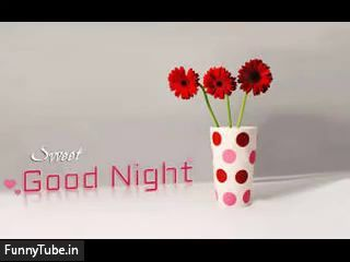 Whatsapp Video Good Night Sweet Dreams Quotes In English Status Video Valentine Day Wallpaper Hd Valentines Flowers Valentines Wallpaper