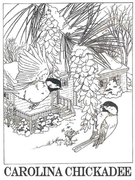 Afbeeldingsresultaten Voor Chickadee Bird Coloring Pages