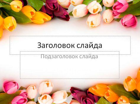 Shablon Dlya Prezentacii Tyulpany Vesennie Cvety S Izobrazheniyami