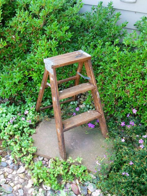 Magnificent List Of Pinterest Step Ladders Images Step Ladders Pictures Evergreenethics Interior Chair Design Evergreenethicsorg