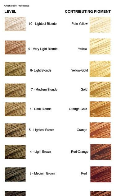 Level 7 Hair Color Chart Part Tscoreks Org 10 Meticulous Lanza Colour Chart New Hair Color Levels 1 10 C In 2020 Level 7 Hair Color Hair Color Chart Lanza Hair Color