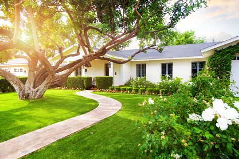 Easy Landscaping Ideas to Consider for Your Yard