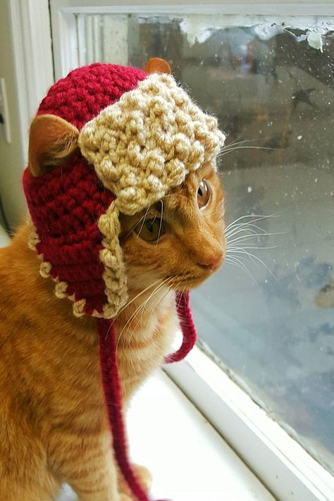 Hats for Cats and Dogs by iheartneedlework on Etsy Winter Cat, Spinning Yarn, Cat Hat, Dog Wear, Pet Costumes, Christmas Cats, Crochet Animals, Pet Accessories, Cat Toys