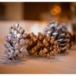 Lovely Silver & Gold Winter Baby Shower?