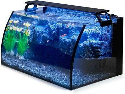 Fish Tank Starter Kit 8 Gallon Curved Glass Free Shipping In 2020 Betta Fish Tank Glass Fish Tanks Fish Tank