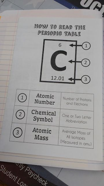 Periodic Table Basics Worksheet Answer Key Ciencia Pinterest - new periodic table with atomic mass and isotopes