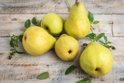 Post Harvest Pear Handling Guide How To Store Pears After You Pick Them Pear Bartlett Pears Fruit Recipes