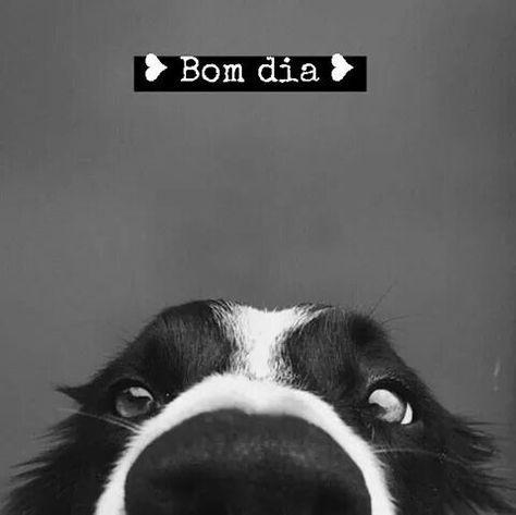 ♥ bom dia amor!