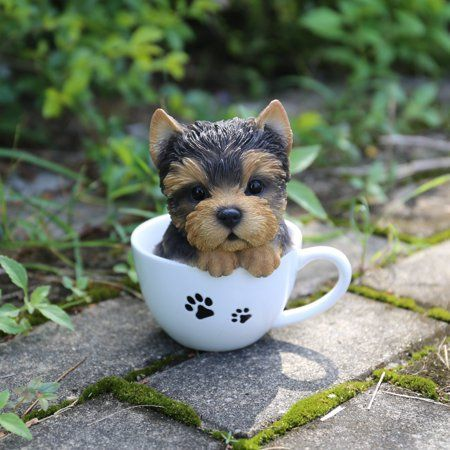 Teacup Yorkshire Terrier Puppy Statue Products Products