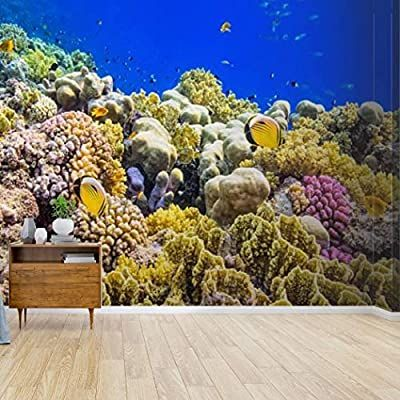 Amazon Com Wall Mural Colorful Coral Reef On Red Sea Nearby Marsa Alam Egyptians And Peel And Sti Large Wall Stickers Peel And Stick Wallpaper Diy Wall Decals