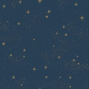 Roommates Upon A Star Vinyl Peelable Wallpaper Covers 28 18 Sq Ft Rmk11319wp The Home Depot In 2020 Peelable Wallpaper Peel And Stick Wallpaper Herringbone Wood