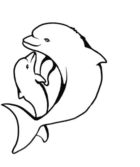 Dolphin Heart Coloring Pages Portraits