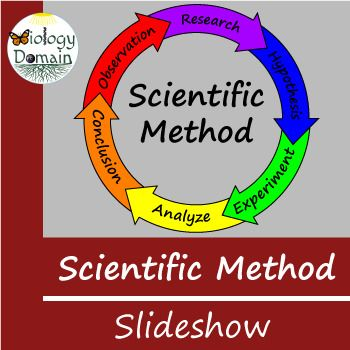 You Will Receive A Ppt And Pdf Version Of The Slide Show More On The Scientific Method Here Thi Scientific Method Vocabulary Cards Scientific Method Printable