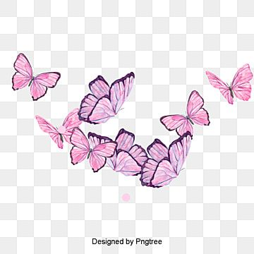 Design Of Beautiful Cartoon Butterfly Insect Butterfly Hand Painted Insect Png Transparent Clipart Image And Psd File For Free Download In 2021 Butterfly Clip Art Butterfly Watercolor Butterfly Illustration