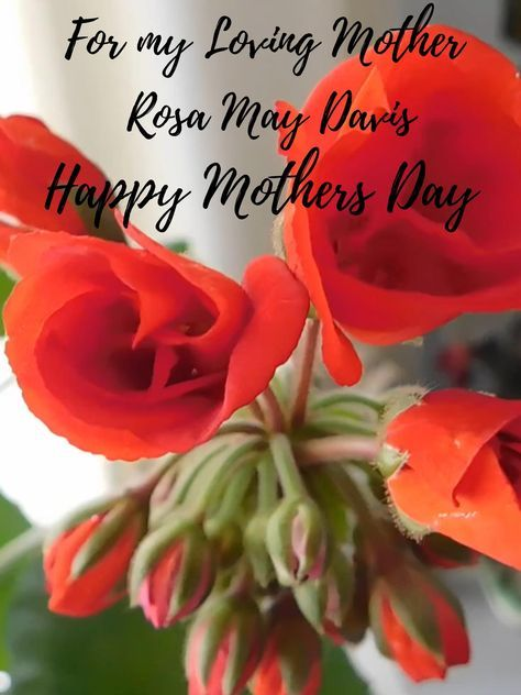 Virtual Video Happy Mothers Day Card Download Digital T Etsy Happy Mother S Day Card Happy Mothers Day Mothers Day Roses