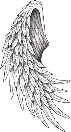 List Of Pinterest Vleugel Tattoo Wings Pictures Pinterest