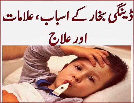 ڈینگی بخار کے اسباب علامات اور علاج Women Problems Health Tips Baby Face