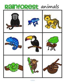 Rainforest Animals Bingo Plus Supporting Printables Rainforest
