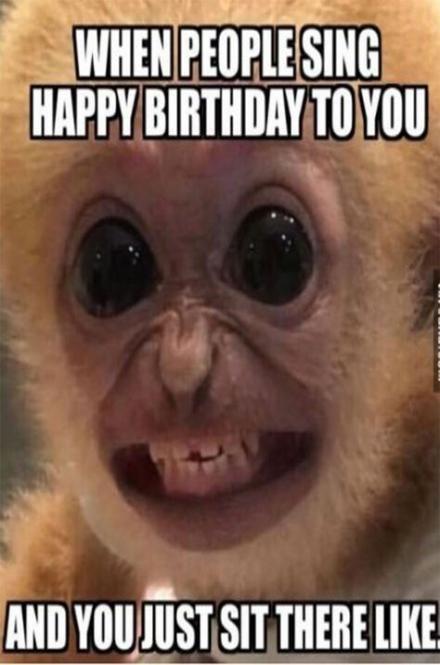 Super Memes Funny Life So True People Ideas Funny Happy Birthday Meme Funny Happy Birthday Pictures Birthday Memes For Men