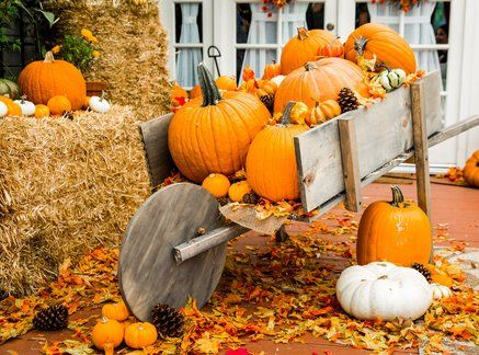 Diy Pumpkin Wagon Cameron Mathison Is Is Making A Fun Halloween
