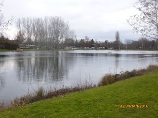 Silbersee freiburg