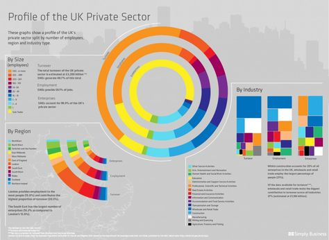 Diversity Infographic Example Business Infographic Infographic Private Sector