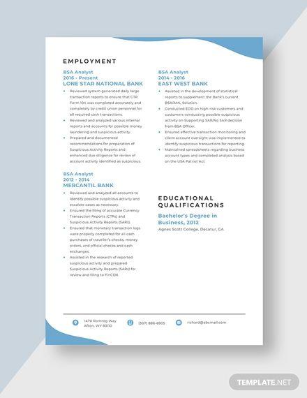 Bsa Analyst Resume Cv Template Word Doc Apple Mac Pages Cv Template Word Analyst Resume Template