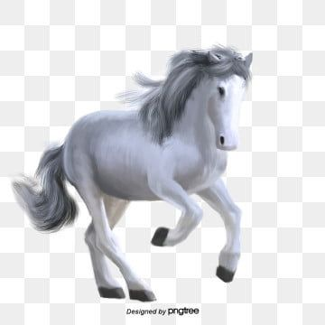 Hand Painted White Horse Running Horse Elements Horse Clipart Hand Painted White Png Transparent Clipart Image And Psd File For Free Download White Painting White Horse Horses
