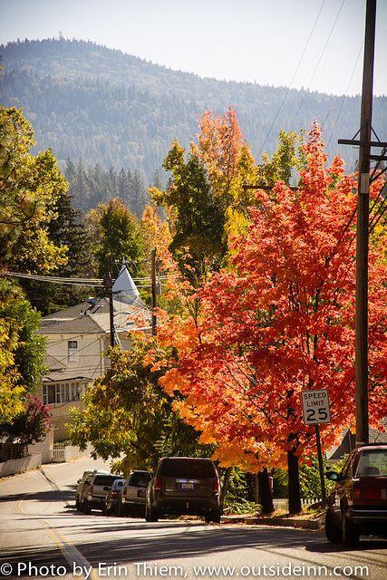 Nevada City Fall Colors Nevada City Nevada City California City Tree