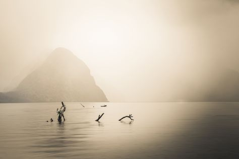 A moody minimalist day in Milford Sound... #TreyRatcliff #Monochrome #MilfordSound #NewZealand