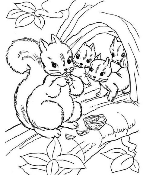 Squirrel Eating Nut With Her Children Coloring Page Squirrel