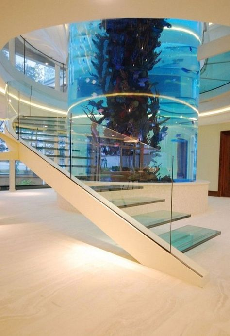 Plus Grand Aquarium De France : grand, aquarium, france, Funky, Fabulous, Tanks, Ideas, Tank,, Aquarium, Design,