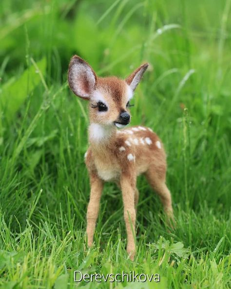 Cute and baby bambi (fawn) photos. Baby Animals Super Cute, Cute Little Animals, Cute Funny Animals, Baby Animals Pictures, Cute Animal Photos, Cute Puppies, Cute Dogs, Cute Babies, Felt Animals