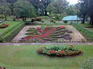 Victoria Park Nuwara Eliya Cool Places To Visit Places To