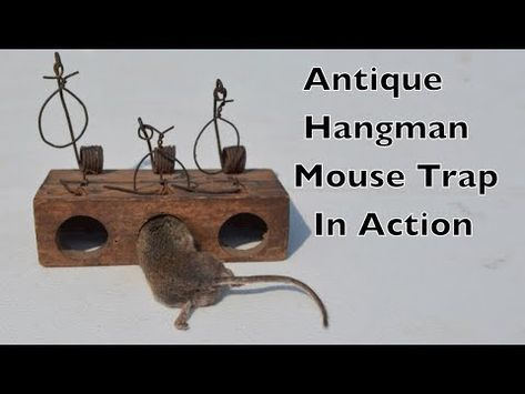Archives Videos Mousetrap Monday With Shawn Woods Mouse Traps Mouse Trap Diy Mouse Trap Game