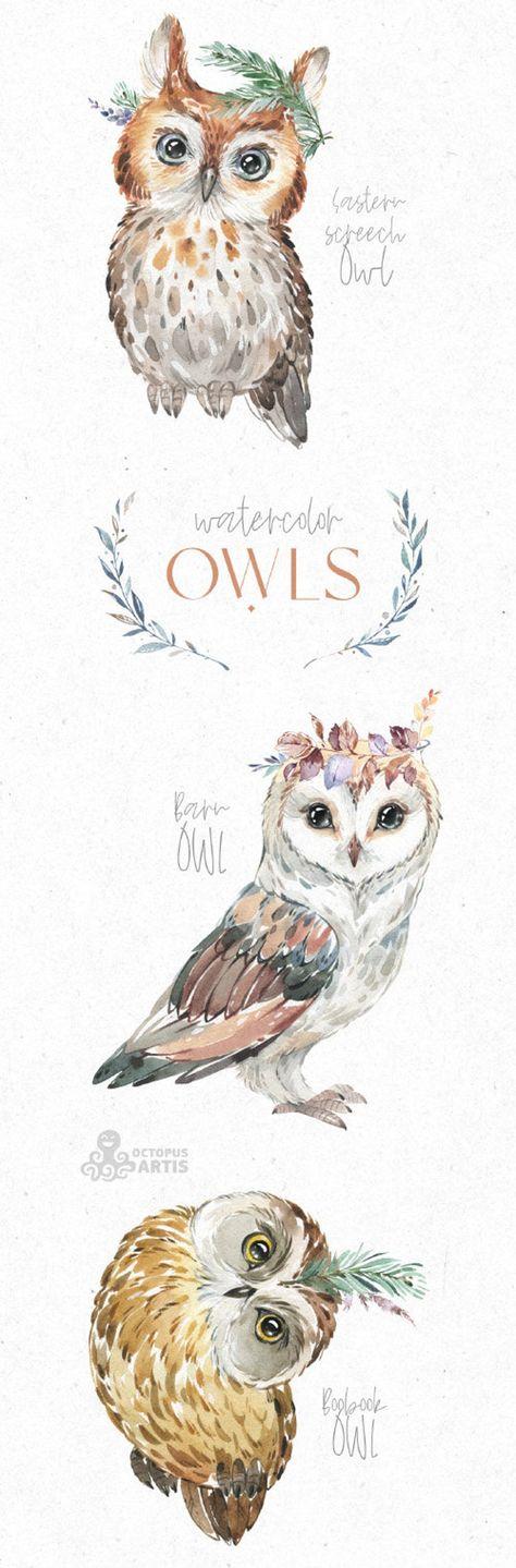 Owls. Watercolor animals clipart, woodland, birds, forest, wreath, floral, cute, nursery art, nature
